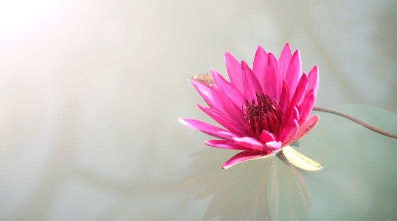 Wie du Achtsamkeit trainierst, ohne gleich zum Yogi zu werden